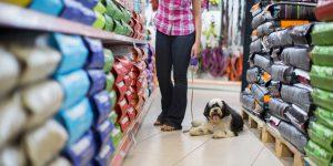Pet Retailers: Does Your Marketing Plan Target Pet Parents Effectively?